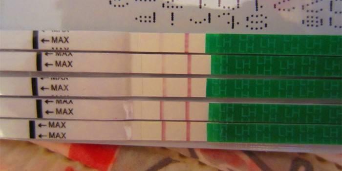 Статья.как правильно делать тесты на овуляцию?