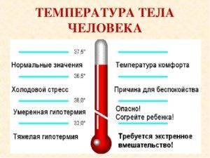 О чем говорит пониженная температура тела