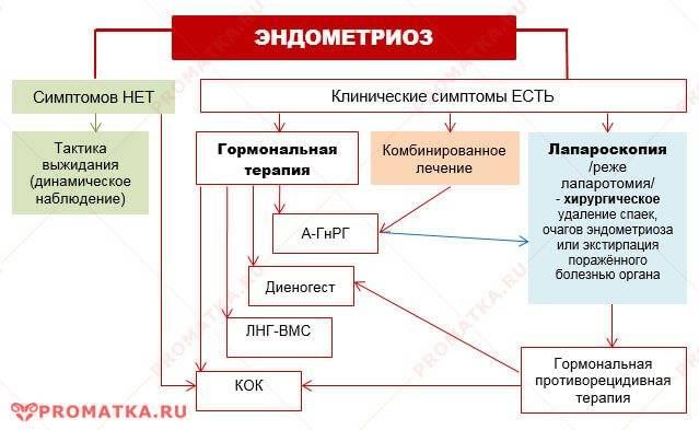 Народные средства лечения эндометриоза