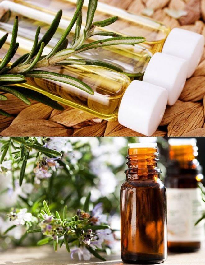 Масло розмарина для волос - полезные свойства и применение