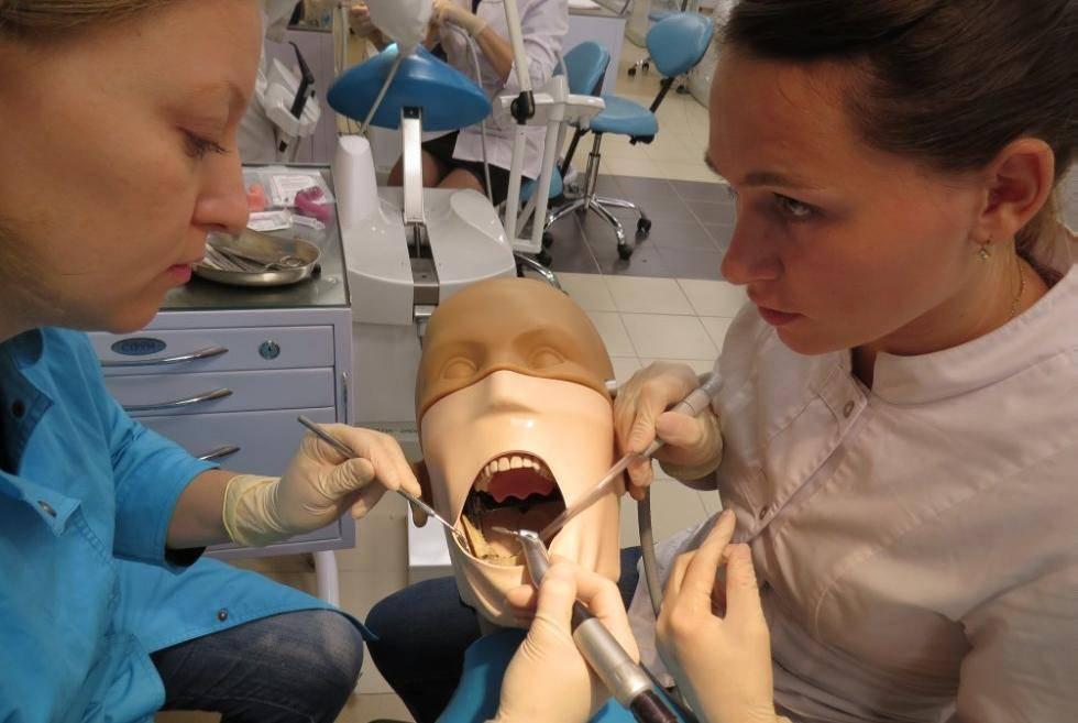 Какие нужно сдавать экзамены чтобы поступить на зубного техника