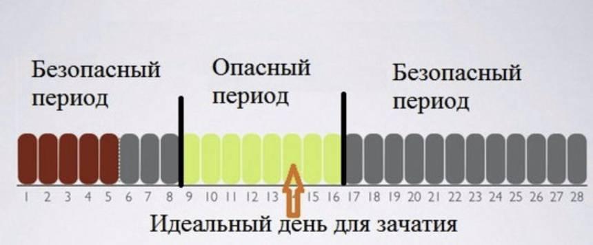 На какой день цикла происходит овуляция при 26,27,28,29,30 дневном цикле