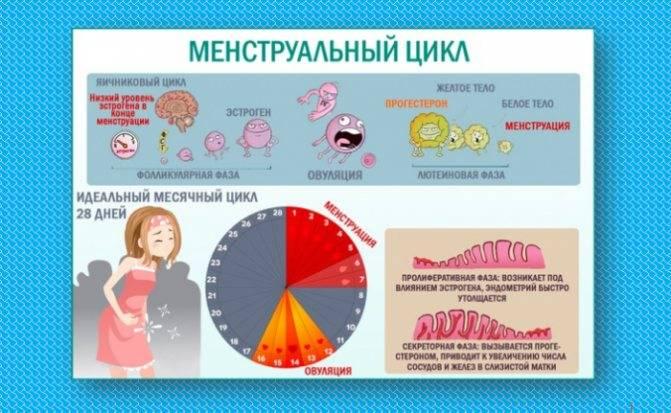 Как влияет гормональный сбой на месячные