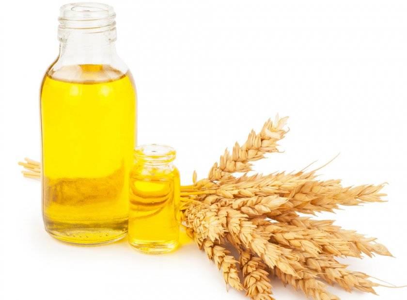 Масло зародышей пшеницы: применение для красоты лица, полезные свойства