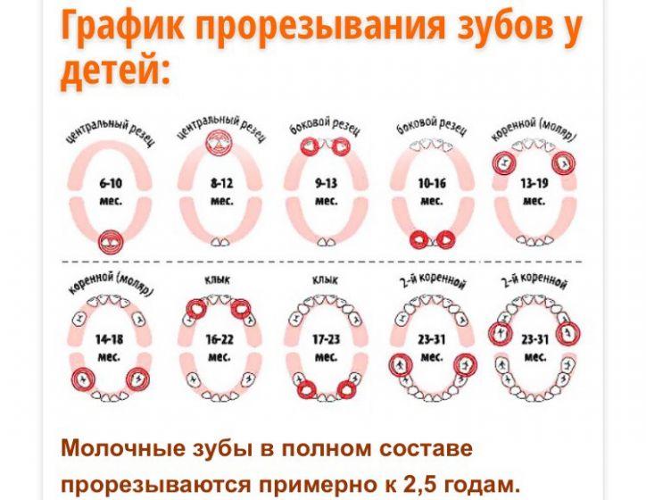Температура при прорезывании зубов у детей