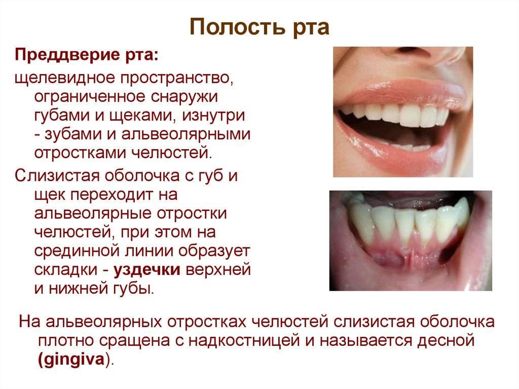 Зубные болезни список. основные стоматологические заболевания и их лечение