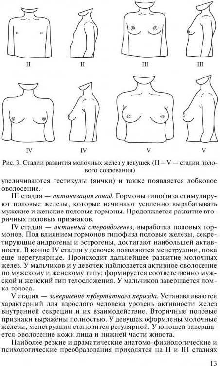 До какого возраста растет грудь у девушек?