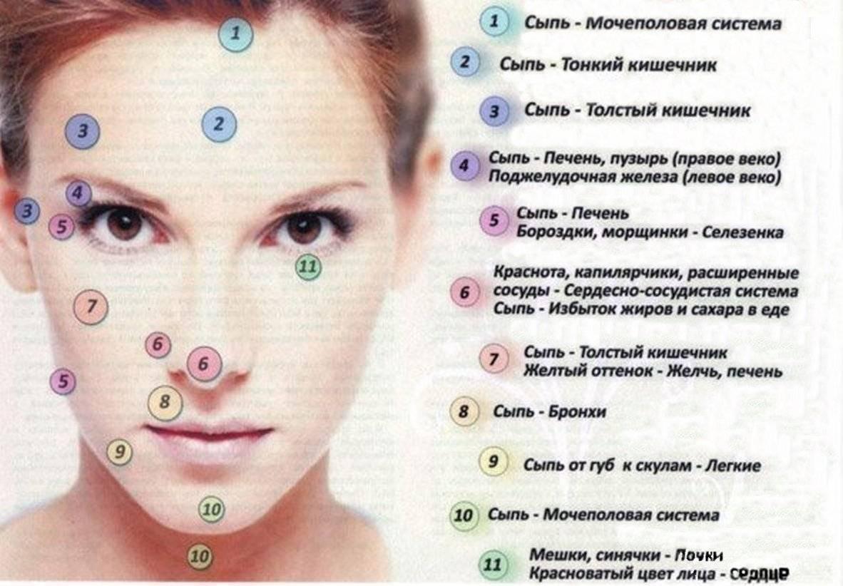 Красная сыпь на теле у взрослого чешется. что это такое, фото, причины и лечение
