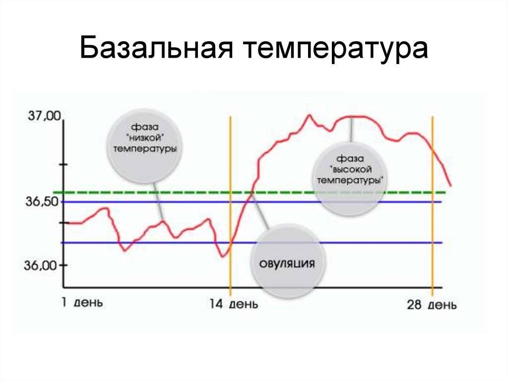 Причины, почему может быть повышенная или пониженная температура при климаксе