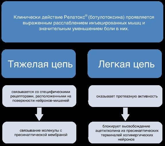Простым языком об инъекционном препарате релатокс. что лучше: это средство или ботокс?
