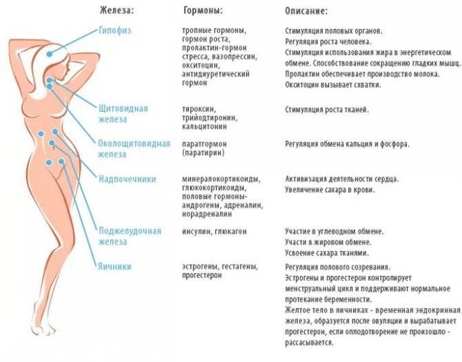 Симптомы снижения уровня пролактина