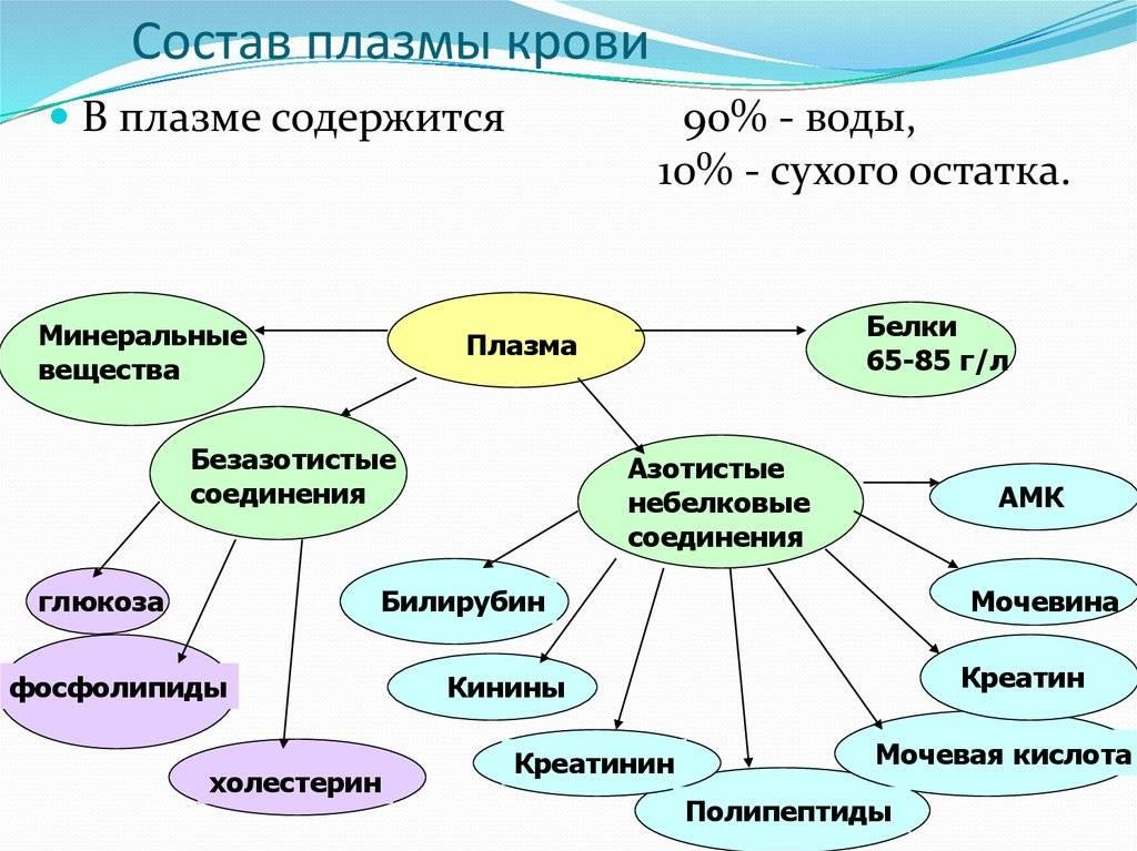Плазма крови: составные элементы (вещества, белки), функции в организме, использование