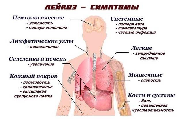Период пременопаузы: признаки, причины, особенности месячных, лечение