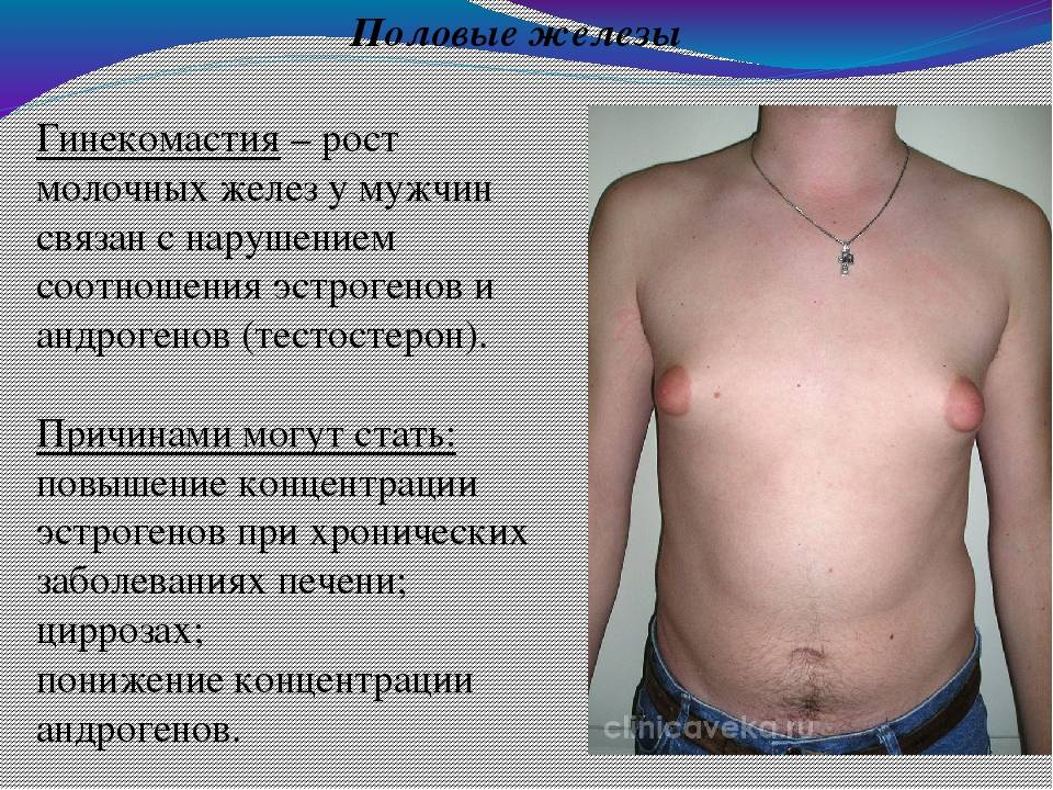Важные вопросы о женском бюсте: до скольки растет грудь, что влияет на процесс