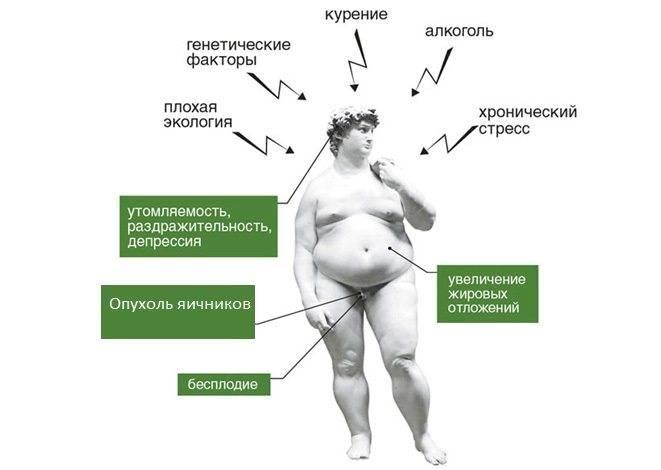 Влияние гормонов на поведение: тестостерон способствует правдивости, а окситоцин — лживости