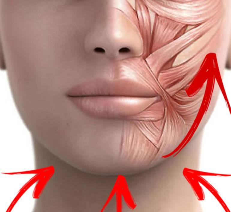 Как избавиться от морщин на шее и в области декольте