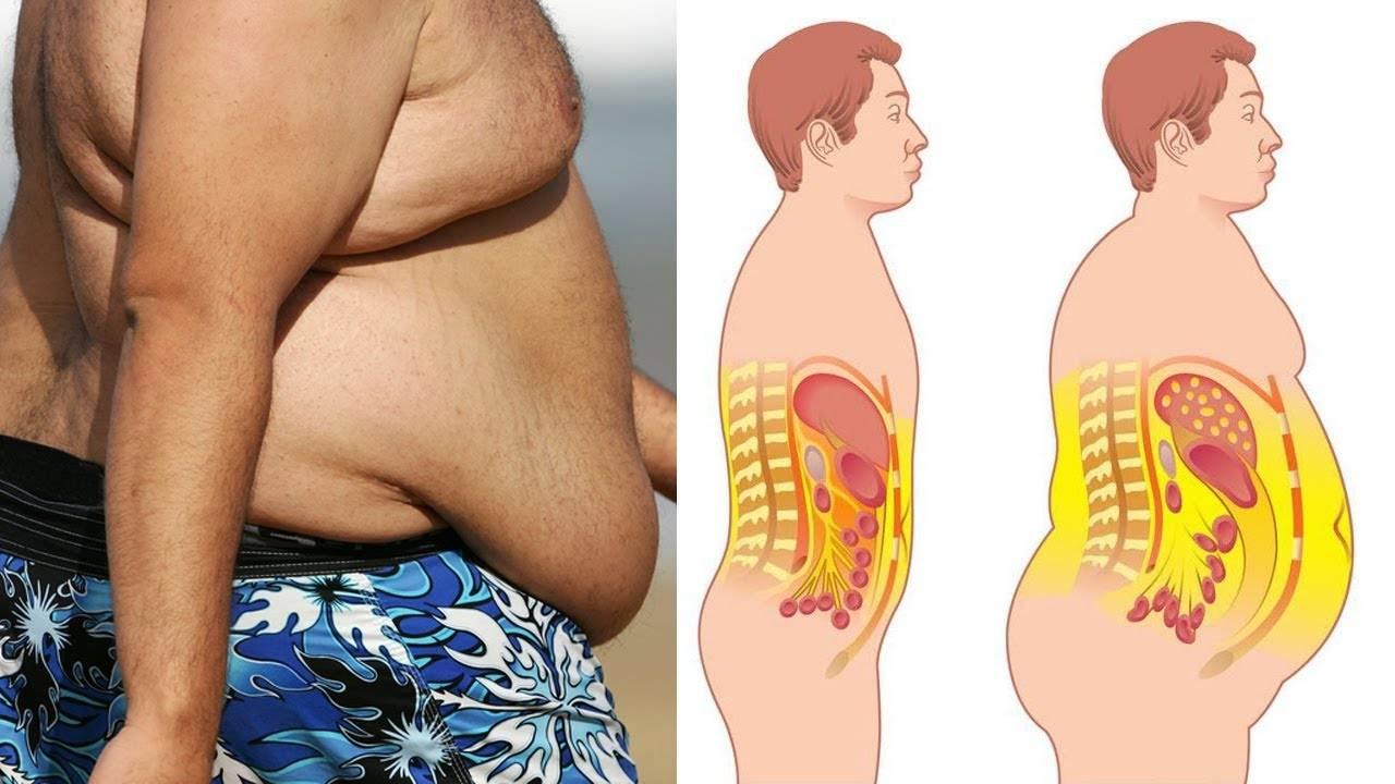 20 эффективных советов, как избавиться от жира на животе, доказанных наукой