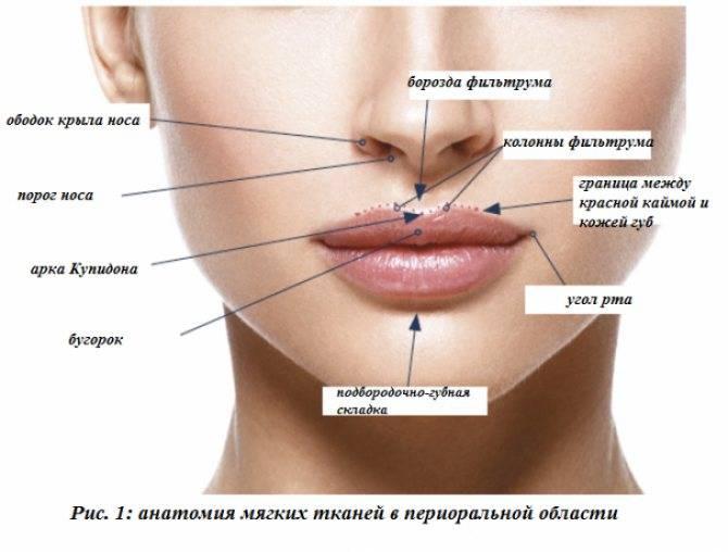 Как улучшить форму губ без филлеров и инъекций?