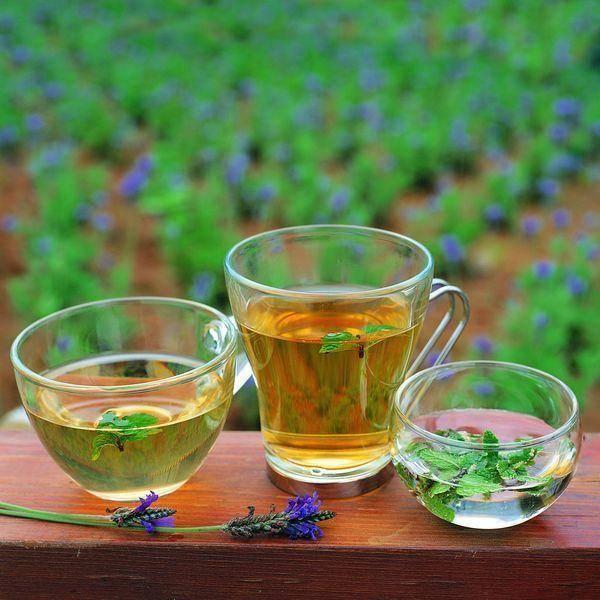 Как приготовить дренажные напитки для похудения дома рецепты эффективных дренажных напитков для похудения
