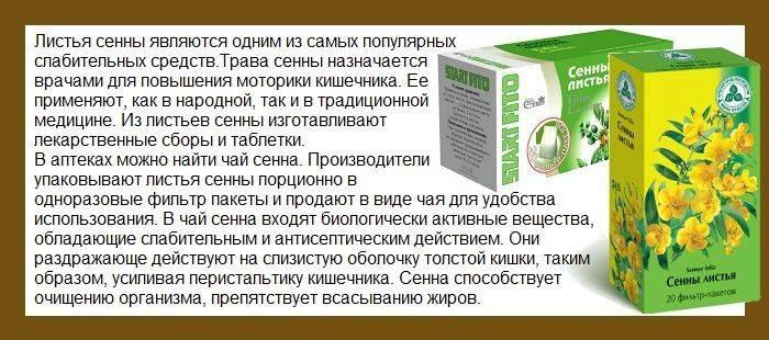 Шалфей — эффективная помощь в лечении бесплодия