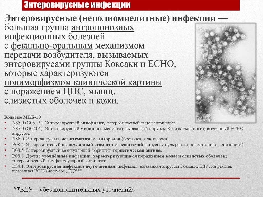 Энтеровирусный везикулярный стоматит: пути заражения, симптомы, лечение