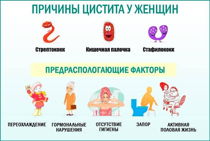Цистит у беременных женщин