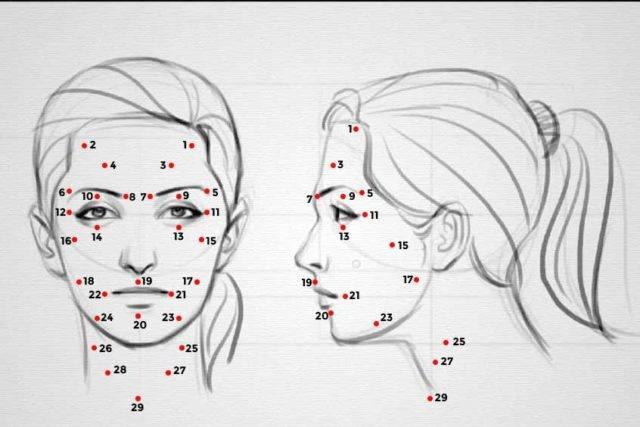 Точки шиацу на лице