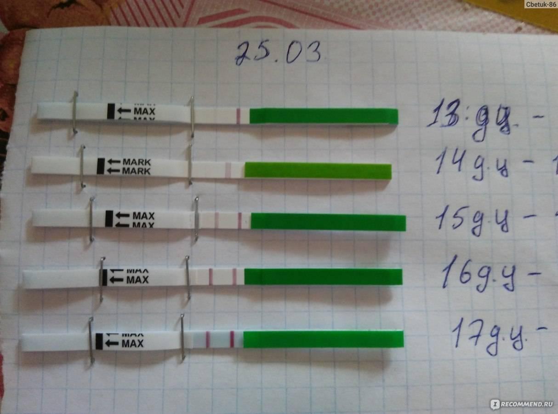 Как работает тест на овуляцию? принцип действия, расшифровка результатов