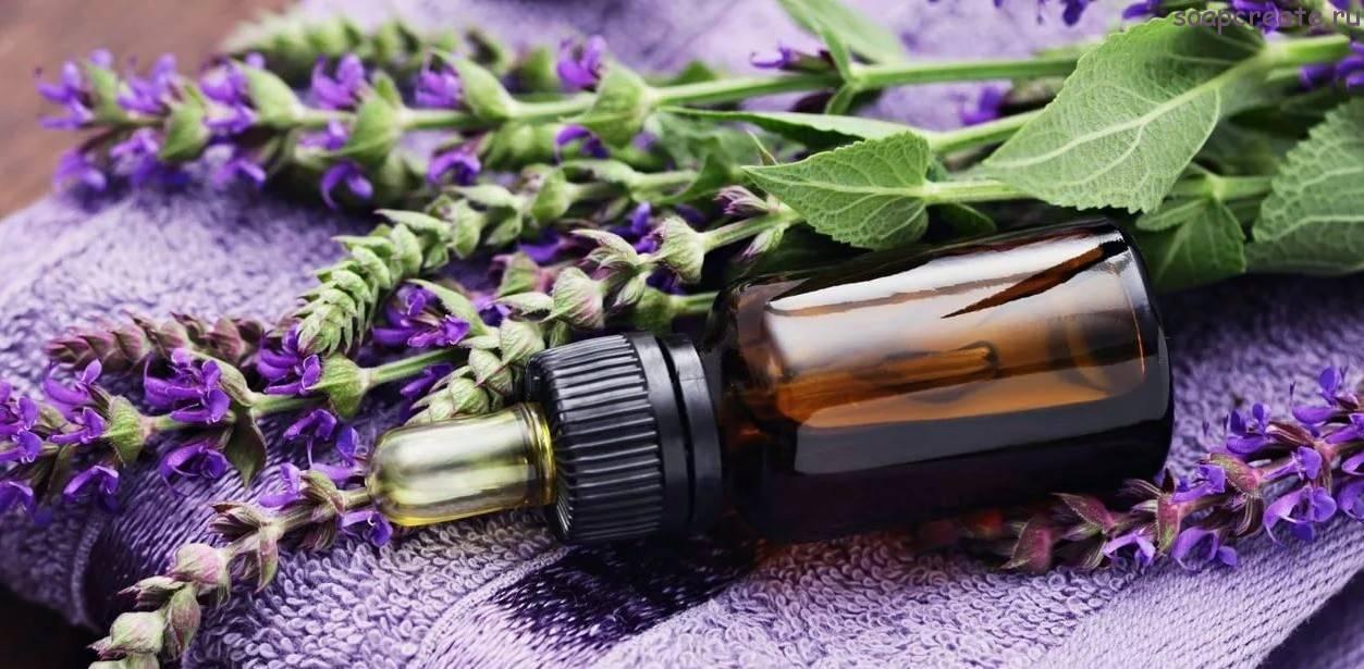 Маски с маслом лаванды: 15 сверхполезных рецептов для волос