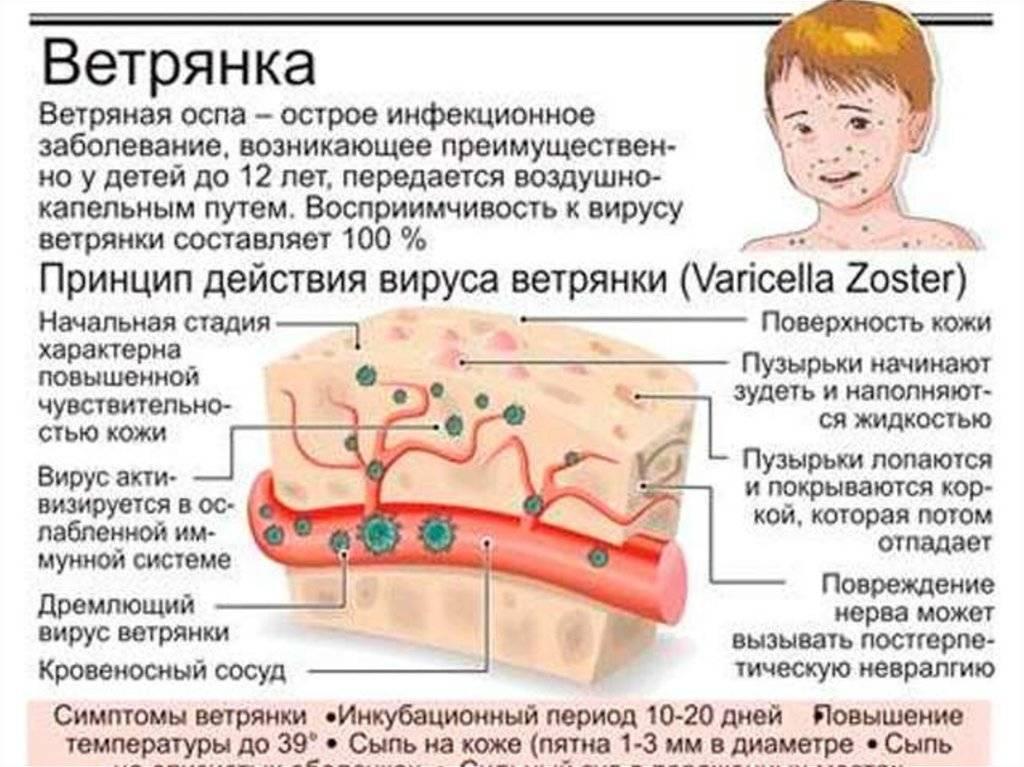 Пузырьки на корне языка: что делать, как лечить. пузырьки на языке: причины и лечение