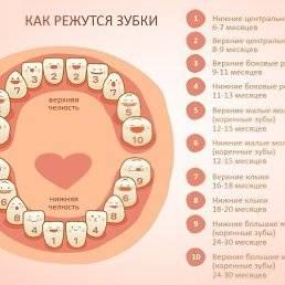 Зубы у ребенка лезут в неправильном порядке
