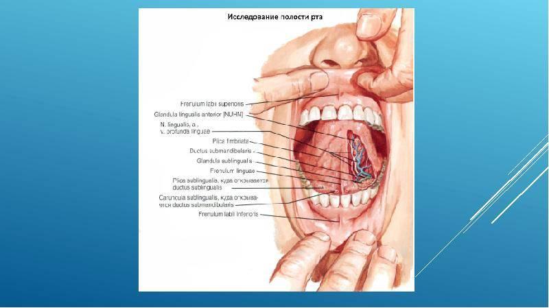 Воспаление слюнных желез. сиалоаденит