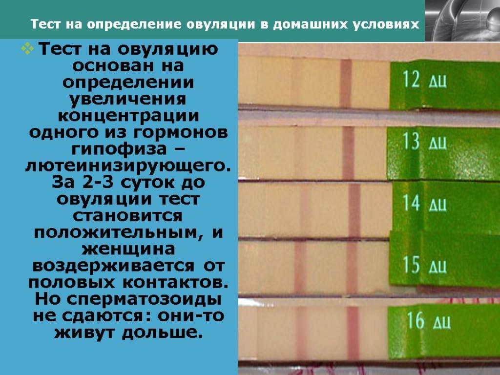 Определить день овуляции по календарю или через калькулятор