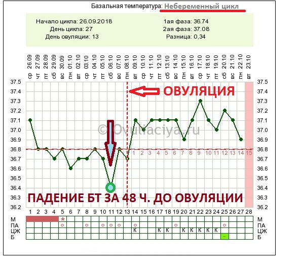 Как правильно измерять базальную температуру при овуляции?