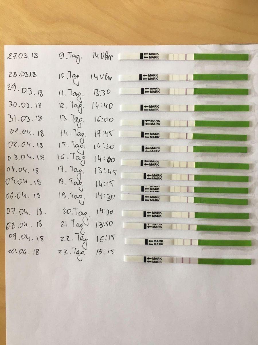 Тесты на овуляцию: от принципов работы до инструкции по применению