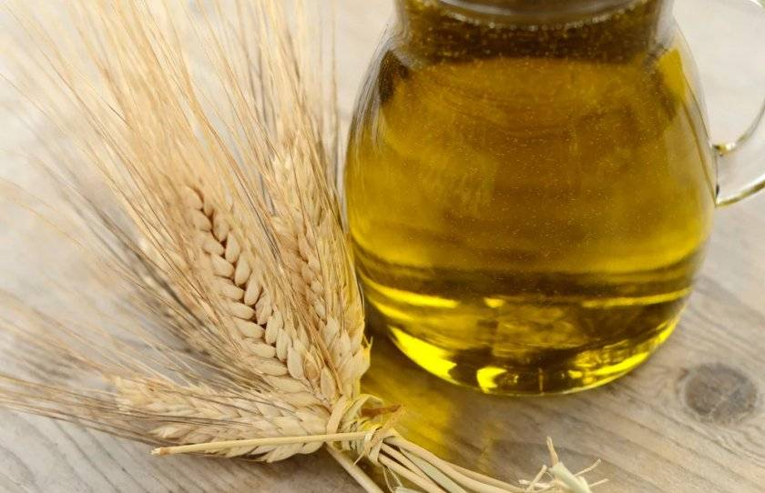 Польза масла зародышей пшеницы для ваших волос