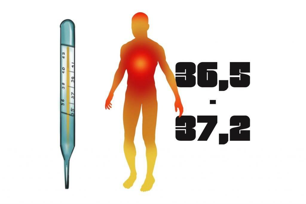 Пониженная температура тела у взрослого: возможные причины, лечение