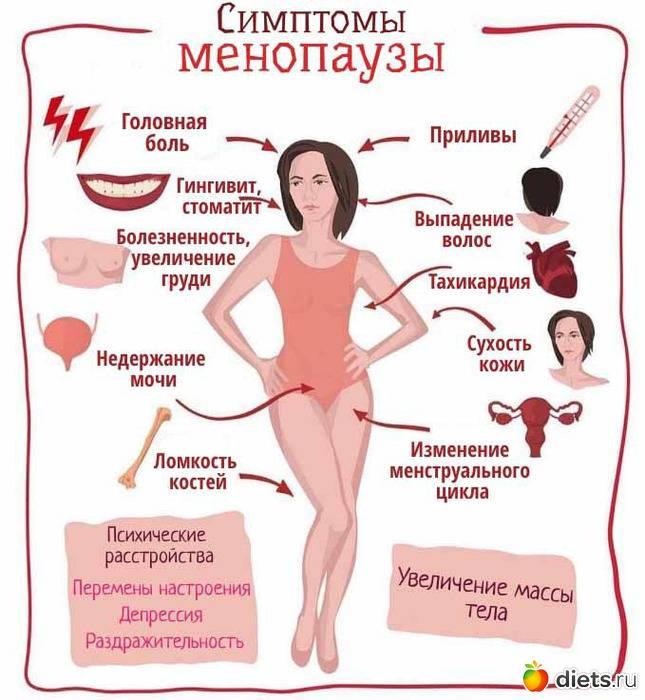 Что делать, чтобы отодвинуть наступление старости у женщин: как отсрочить менопаузу и избежать проявлений климакса