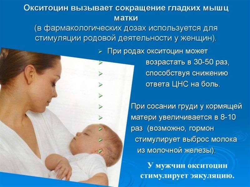 Матка после родов – опущение, сокращение. сколько сокращается матка после родов и как это ускорить