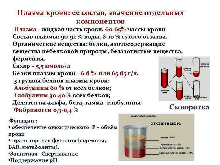 В крови пять основных фракций белков