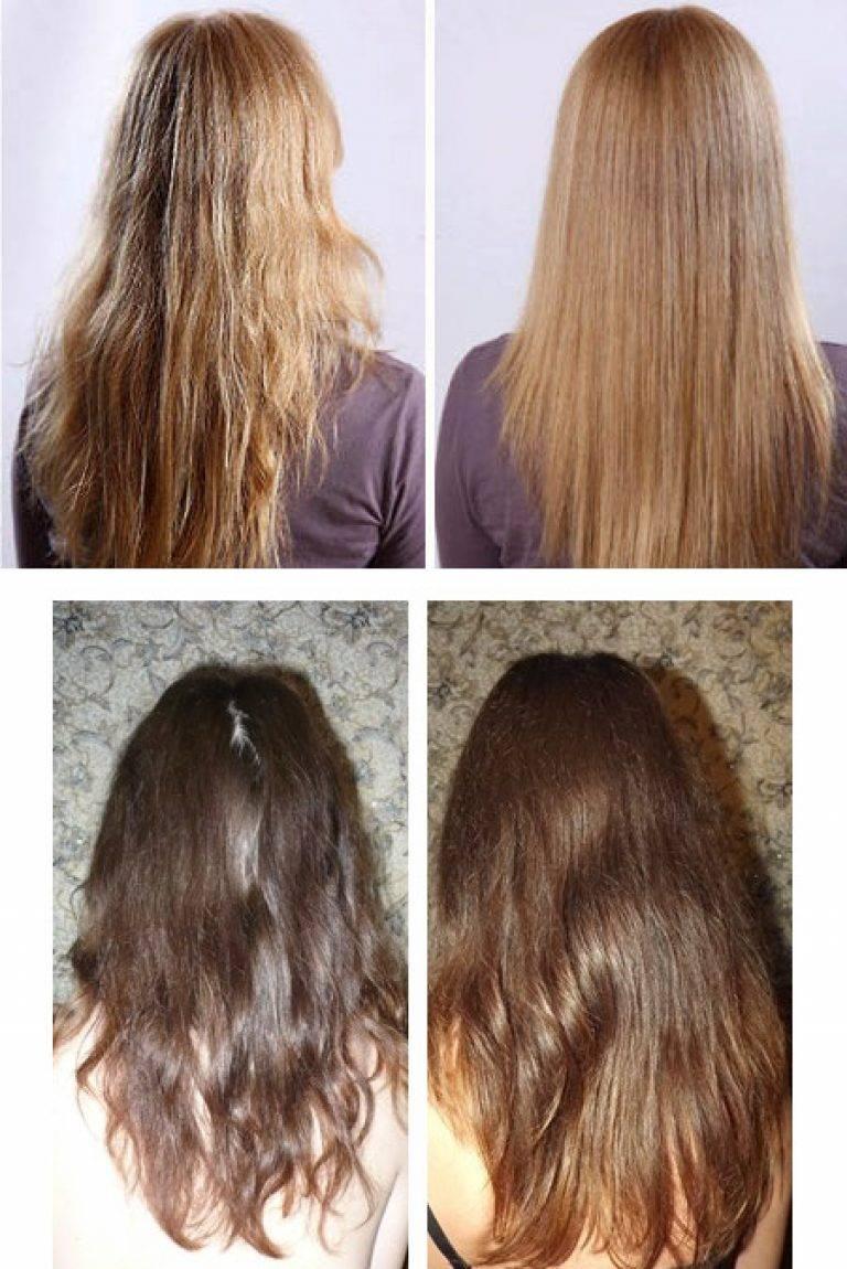Как наносить маску растительное масло на волосы. нерафинированное подсолнечное масло для волос — маски. масло для волос в домашних условиях