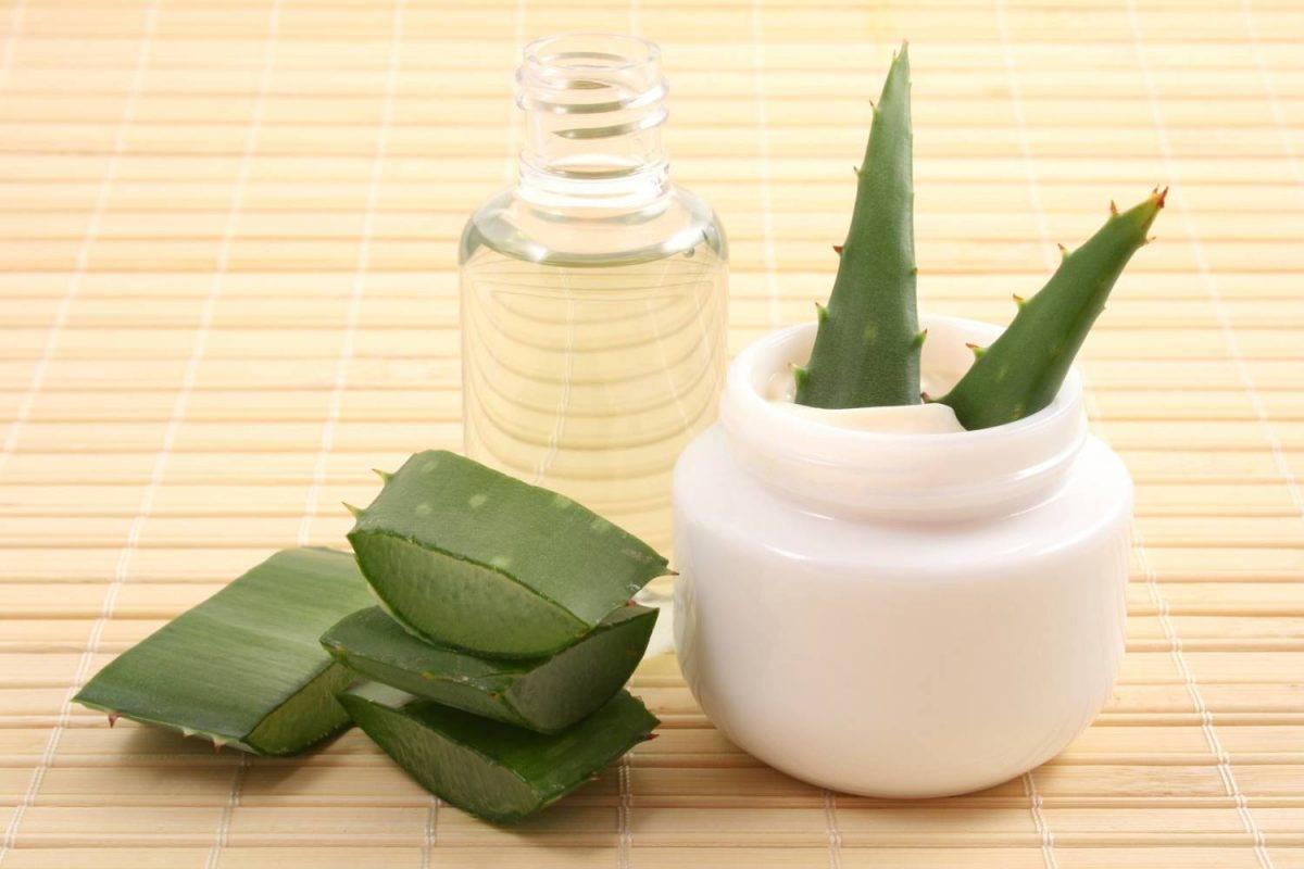 Рецепты масок для лица с алоэ — просто, удобно и эффективноизбавиться от морщин