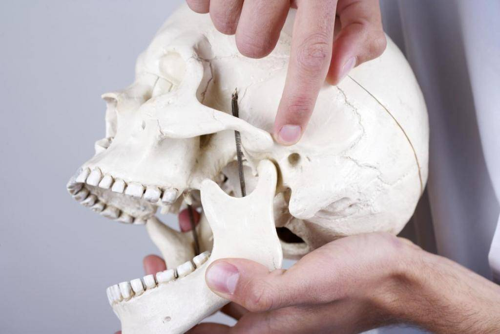 Почему хрустит челюсть и что делать?
