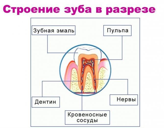 Убить зубной нерв в домашних условиях
