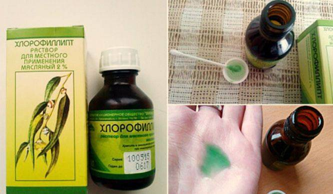 Хлорофиллипт: инструкция по применению