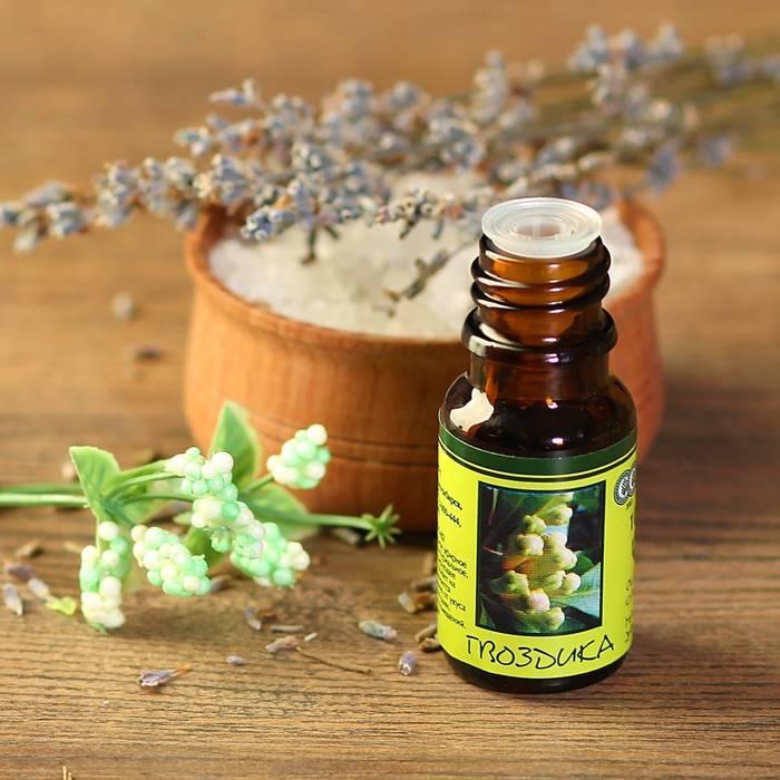 Масло гвоздики — полезные свойства и применение
