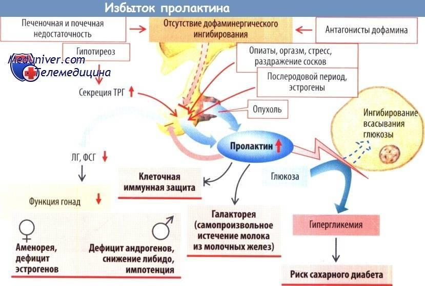 Снижение уровня пролактина причины