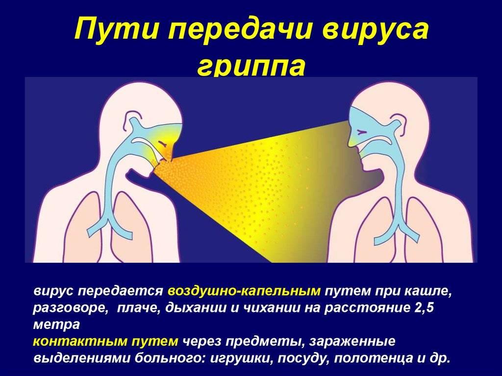 Стоматит передается воздушно капельным путем