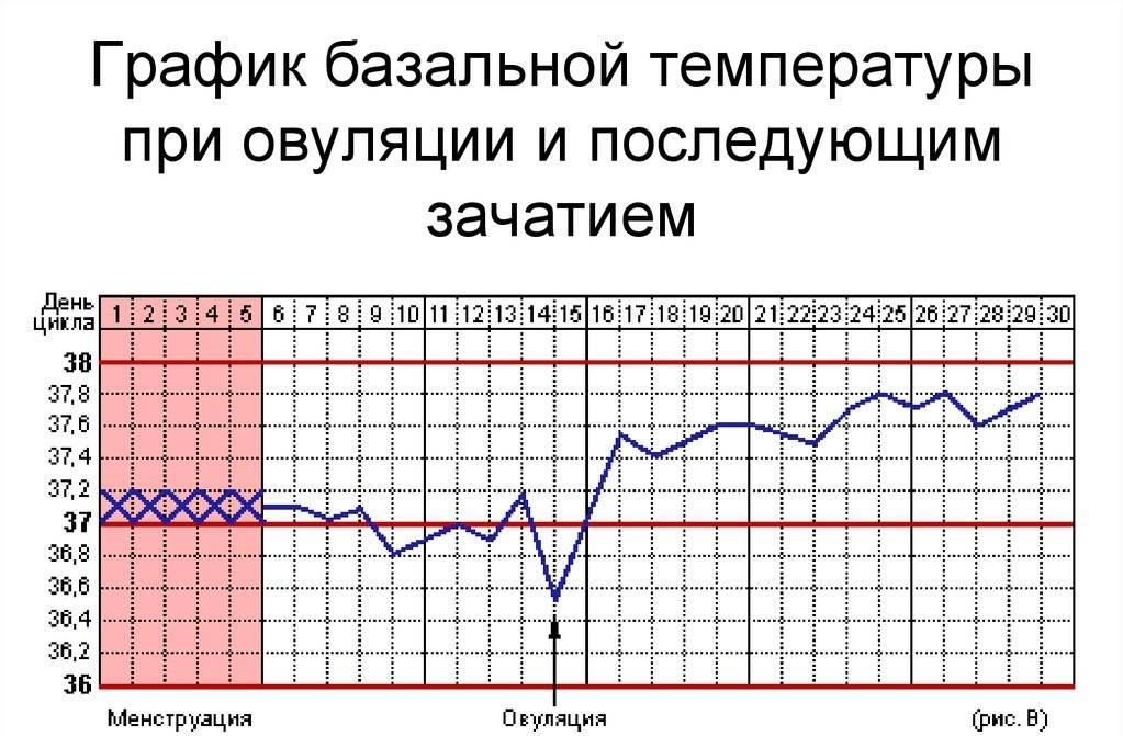 Повышенная температура при пмс