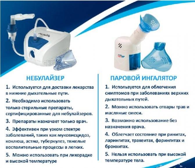 Ингаляция с хлорофиллиптом в небулайзере: основные правила